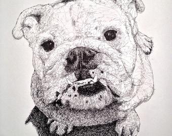 "Pet portraits - 18"" x 18"""