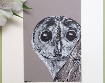 Tawny Owl Portrait, Bird Art, Pen and Ink