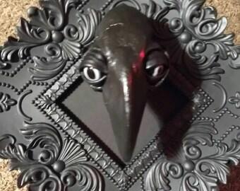 Cat Skull with beak