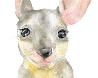 Kangaroo Watercolor Painting 5 x 7 Fine Art Giclee Reproduction Australian Animal Joey