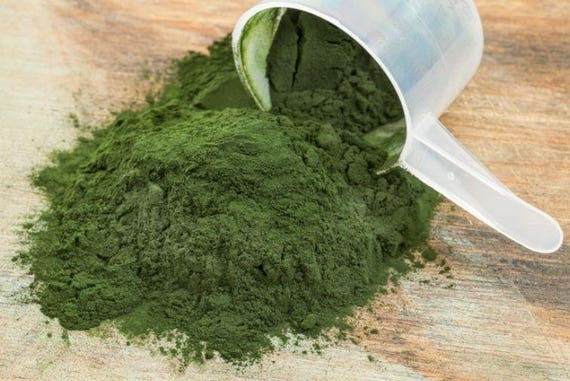 1 oz. 100% Organic Raw Blue/Green Spirulina Powder Isopod springtail Land Snail Hermit Crabs Food Treats Snack