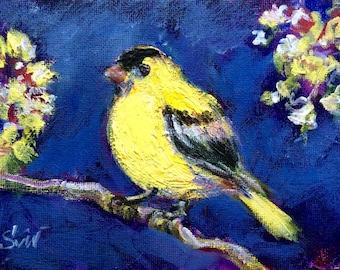 Goldfinch painting bird painting yellow bird original art 5 x 7