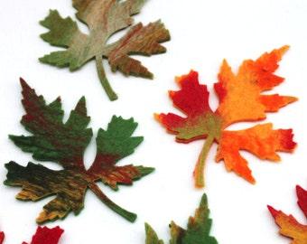 Leaves, 10x, felt, leaves autumn
