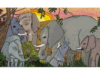 A baby elephant is welcomed ~ !9 x 13