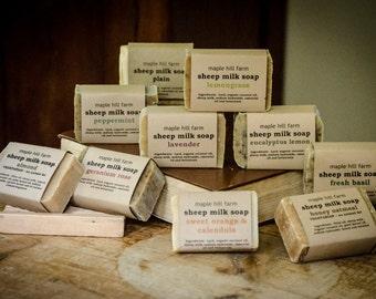Sheep Milk Soap - Bulk Order - 3 Bars