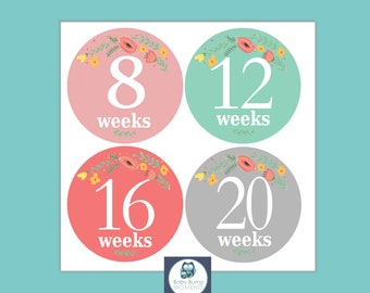Baby Bump Stickers, Maternity Stickers, Weekly Pregnancy Stickers, Belly Stickers,  Baby Belly Stickers, Month Stickers
