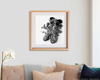 Roque. Toy, bear, black and white, 4x4, decor, wall art, artwork, large format photo.