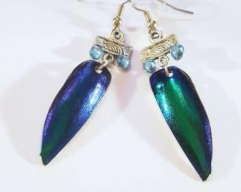 Jewel Beetle Wings Earrings Rhinestones Bohemian Jewelry Boho Cruelty Free Insect Bug Surgical Steel Blue Green