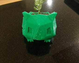 Bulbasaur pokemon planter for succulents. Perfect for home or office