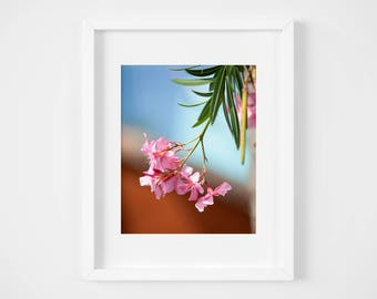 Spring Blossom Photography, Flower Picture, Pink and Orange Wall Art, Nature Home Decor, Floral Print, Botanical Art - Girlfriend photo gift