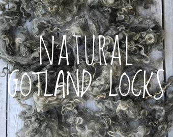 English natural grey Gotland lamb locks - soft, silky and  curly. Beautiful fleece. Felting & spinning wool locks