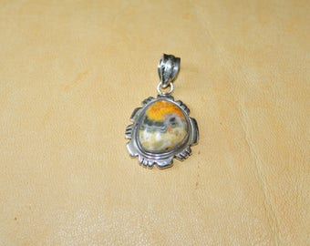 Southwestern Native Agate and SS Pendant plus Free USA Shipping!