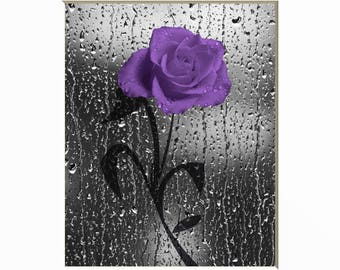 black white purple bathroom decor purple rose flower purple home decor matted picture