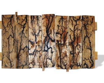 Wall Art FEATURING Lichtenburg Figures Fractal Art Huge 22x41