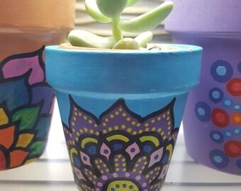 Handpainted pot and Sedum succulent