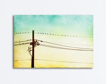 "Nursery Canvas - bird on wire yellow blue aqua turquoise teal modern gallery wrap babys room wall art light pale yellow picture, ""Hang Out"""