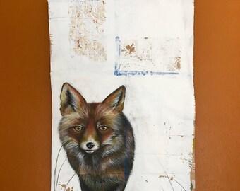 Fox in the Field