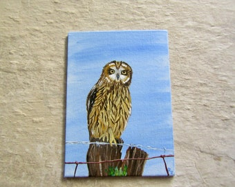Owl | Hawaiian Pueo | Wildlife Art | Original Painting | Affordable Fine Art