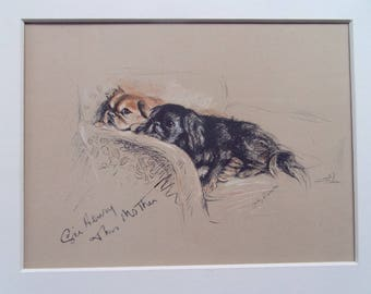 "Pekinese  dog print by Lucy Dawson dated 1935 in 10""x8"" mount ready to frame"