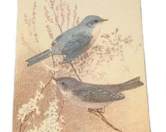Vintage Hallmark Postcard - Two Blue Birds Postcard
