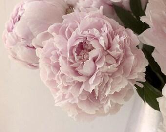 Peony Art, Pink Peony Print,  Vintage Style, Shabby Chic Wall Decor,  Flower Photography