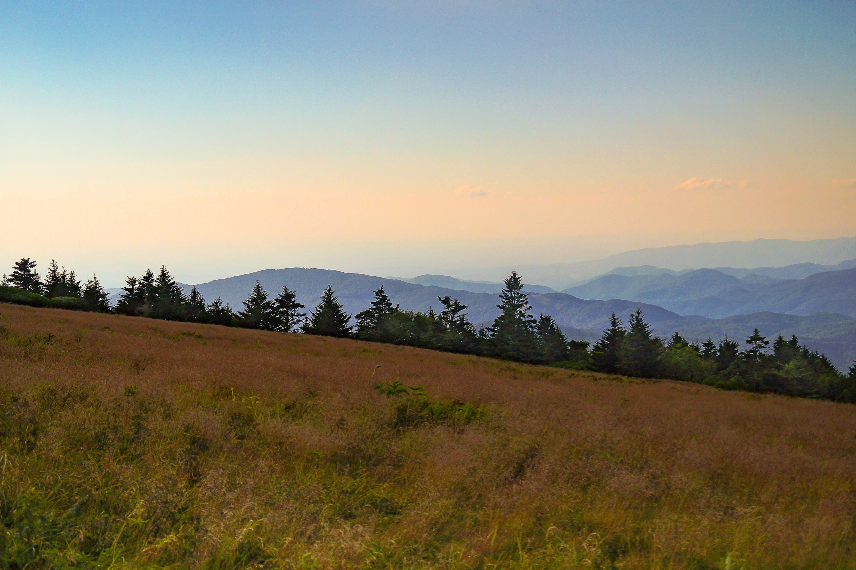 appalachian mountains essay Dingess, west virginia — hidden deep within the coal filled appalachian mountains of southern west virginia.