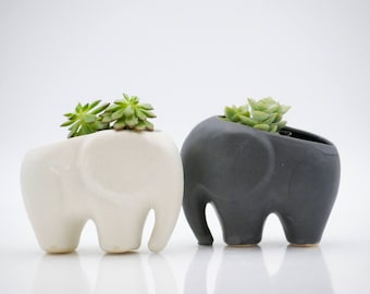 Elephant planter for succulents, ceramic planters, Mothers day gift, elephant decor, Gifts for mom, desk plants, housewarming gift