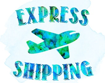 Express Shipping Service (EMS) - Express Delivery - Upgrade