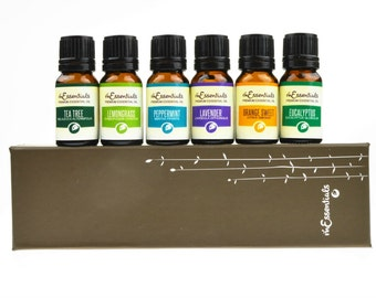 Top 6 Essential Oil Gift Set 100% Pure Therapeutic Grade 10 Ml bottle set
