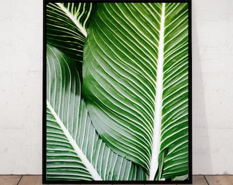 Green Leaves Print, Leaf Photography, Close Up Leaves, Green Photography, Details Green Leaves, Botanical Wall Art, Tropical Leaves Print