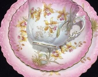Aynsley handpainted vintage tea cup