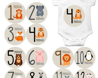 Monthly Baby Sticker Baby Boy | Baby Girl | Baby Month Stickers | Baby Milestone Sticker | 12 Month Stickers | Photo Prop | Animals 1163