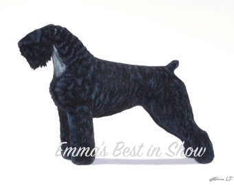 Black Russian Terrier Dog - Archival Fine Art Print - AKC Best in Show Champion - Breed Standard - Working Group - Original Art Print