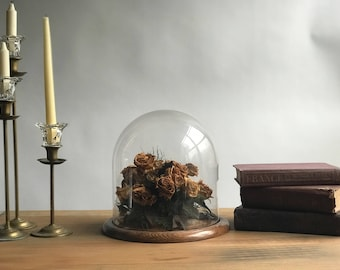 Vintage Oversized Glass Cloche with Wood Base / Large Glass Dome