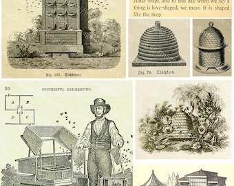 Digital Collage Sheet, Beekeeping, Victorian Farm Illustrations,  Printable Scrapbooking Download