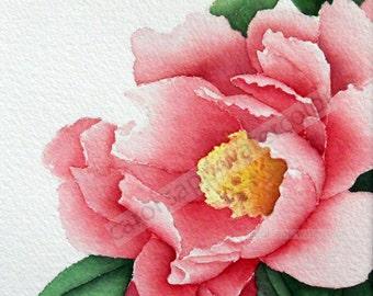 peony watercolor-rose peony painting-pink peony painting-botanical watercolor-botanical painting-flower painting-tree peony painting