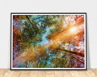 Forest Print Art - Printable Wall Art, Forest Trees Poster, Nature Art, Colorful Art, Contemporary Art, Tree Art Print, Colorful Wall Art