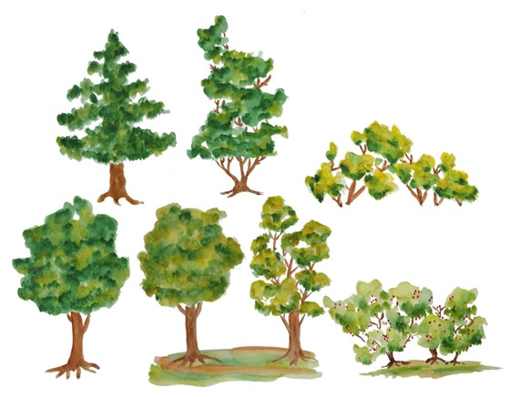 Watercolor tree clipart Trees clipart Wood clipart