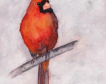 Cardinal  Print of Watercolor Painting, wall art,animal,bird, wildlife,cardinal,nature,cardinal art,cardinal painting,painting,bird lover