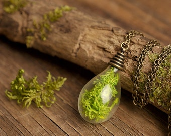 Woodland necklace, terrarium necklace, real moss necklace, nature necklace, green necklace, antique brass pendant, glass vial necklace
