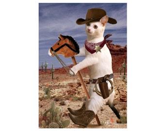 Cat Photo Card: Ponyboy