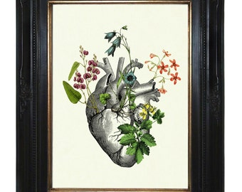 Flowers Anatomical Heart Art Print II Love - Victorian Steampunk Art Print Gothic Morbid Poster