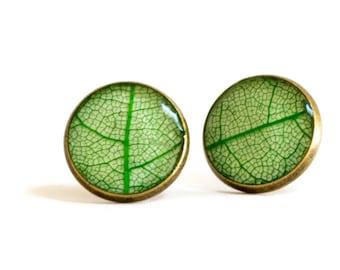 Real leaf earrings, real skeleton leaf earrings, leaf earrings, resin jewelry, homemade jewelry, earrings, nature inspired jewelry, studs