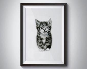Kitten Rawr