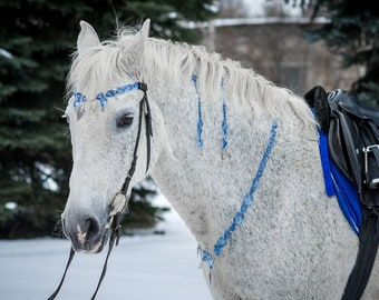 Set tack jewellry for horse Rhythm beads kit bling Pony costume Gift horse lover Pony accessory Horse necklace pendant Browband Mane dangler