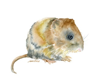 Vole Watercolor Painting - 11 x 14 - Giclee Print Woodland Animal Nursery Art