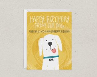 Birthday From Dog Card | Greeting Card
