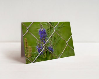 Purple Flower Behind a Chain-Linked Fence Note Cards (set of 8)