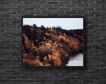 Autumn Forest Print - Fall Landscape Print - Autumn Colors - Forest Landscape Photo - Forest Photo - Forest Wall Art - Forest Wall Decor