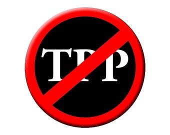 """Aucun PPT!  TPP Slash grand 2.25"""" bouton ou Magnet - vers le bas avec le TPP"""